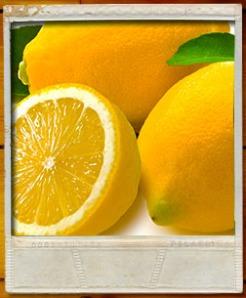 lemonpolaroid